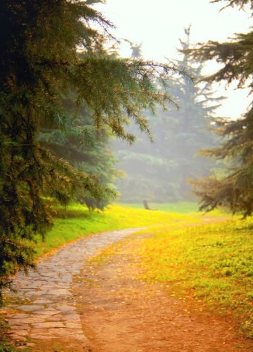 秋天的童话 唯美清新的秋季风景图赏 原创