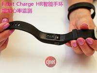 心率监测新品:Fitbit Charge HR和Surge