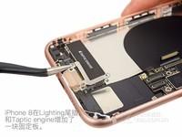 苹果iPhone 8(全网通)专业拆机6