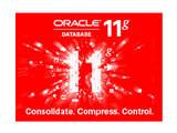 oracle 11g 标准版企业版特价促销
