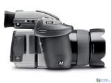 ����H4D-50