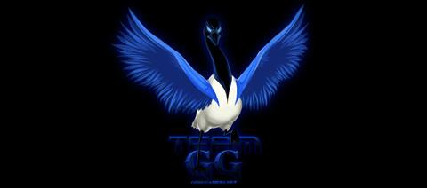 著名Gosugamers网成功组建星际2战队
