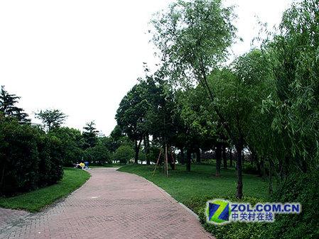 > 酷睿2发布地 上海世纪公园优美风景秀    公园以大面积的草坪,森林