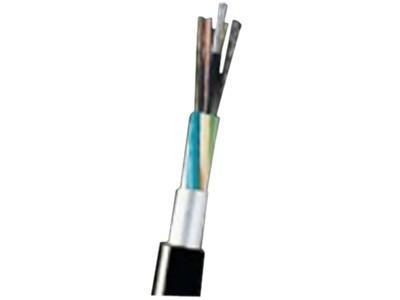 大唐保镖 室外架空多模8芯光缆(GYXTW-8A)