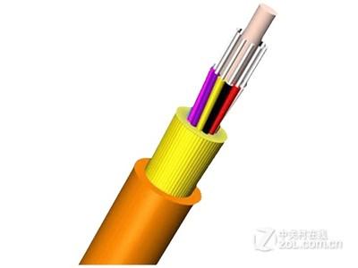 大唐保镖 室内多模12芯光缆(GYTA-12A)
