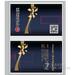 业王卡片式u盘-1G