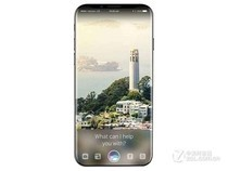 苹果iPhone 9 Plus(全网通)