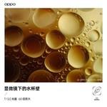 OPPO Find X3 Pro(12GB/256GB/全网通/5G版)样张秀6