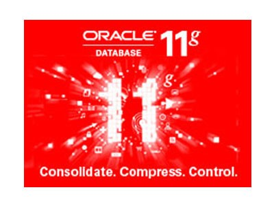 Oracle 11g 简化版