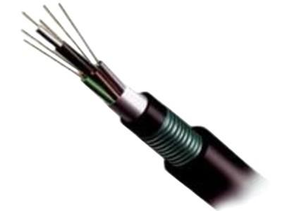 大唐保镖 室外直埋铠装单模12芯光缆(GYXTS-12B)