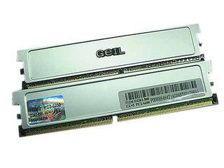 金邦512MB DDR2 800(白金条)
